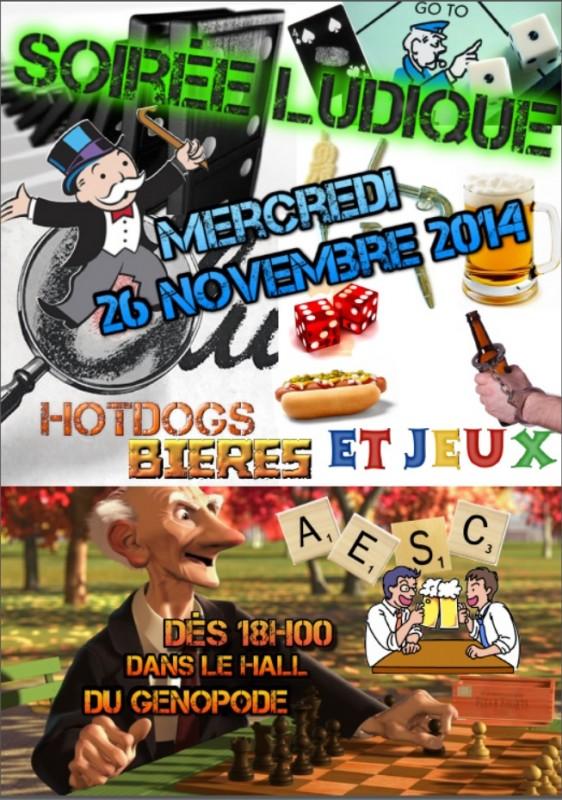 soirée ludique 26.11.2014