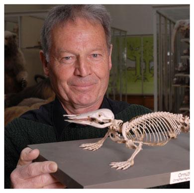 Peter Vogel. Professeur honoraire à l'UNIL, il a pu observer l'animal dans la nature, en Australie. © Nicole Chuard