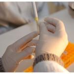 En biologie moléculaire, on travaille toujours avec des gants, pour se protéger et éviter de contaminer les expériences. Dans le fond, un portoir, destiné au transport de tubes. Photo Nicole Chuard.