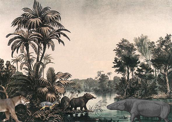 Le paysage lausannois, il y a 25 millions d'années. De g. à dr. un Amphicyon (prédateur), un Amphitragulus (cervidé primitif), deux tapirs et un Anthracotherium magnum (ou valdense). D'après une peinture du Musée cantonal de géologie, Unlobogris & D. Bogdanov.