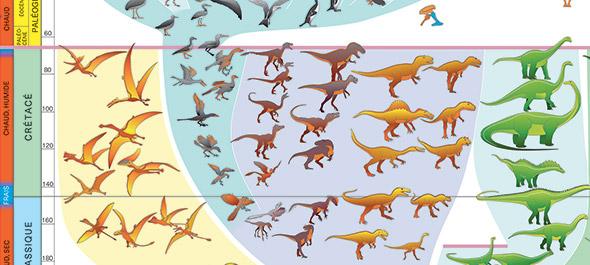 Les oiseaux ont survécu à l'extinction survenue il y a 66 millions d'années. Extrait de l'Atlas. © Arthur Escher