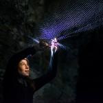 Laura Clément recueille un minioptère de Schreibers. La femelle est portante, du jamais vu en 13 ans d'exploration des grottes. Photo F. Ducrest © UNIL
