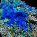 Cette cyanotrichite d'un bleu intense vient d'Arizona. Photos © Stefan Ansermet / Musée cantonal de géologie