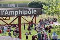 amphipole_361_242_small