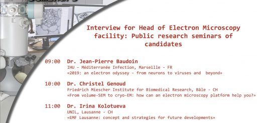 Interview for Head of Electron Microscopy facility: Public research seminars of candidates