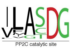 PP2Csite
