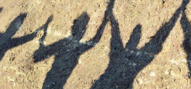 Guerre et paix: Les arguments en faveur du partage du pouvoir