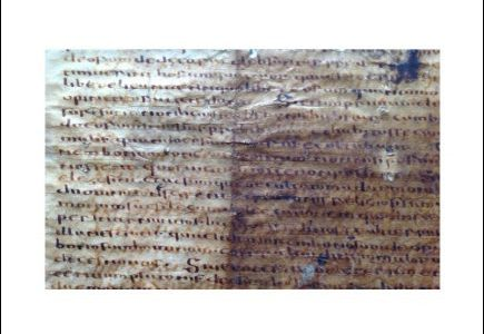 Le palimpseste gotique de Bologne. Études philologiques et linguistiques / The Gothic Palimpsest from Bologna. Philological and Linguistic Studies