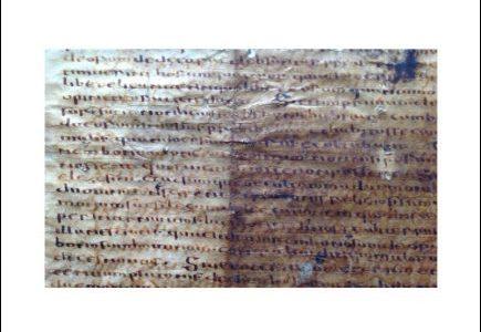 Le palimpseste gotique de Bologne. Études philologiques et linguistiques / The Gothic Palimpsest from Bologna. Philological and Linguistic Studies