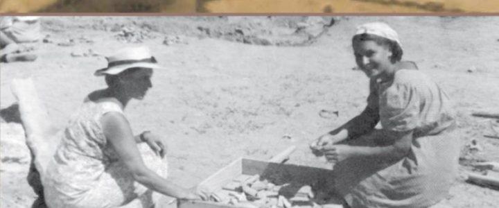 Études pontiques. Histoire, historiographie et sites archéologiques du bassin de la mer Noire